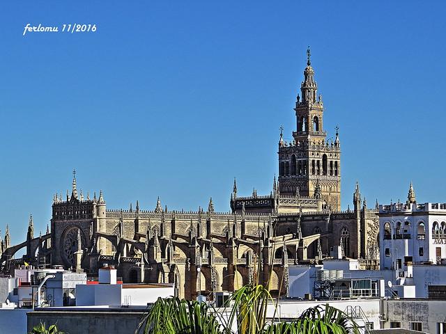 Sevilla. Giralda y catedral. Giralda y catedral