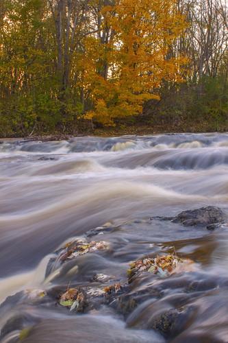 Rib Falls