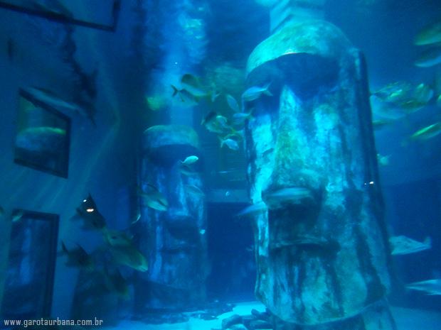 Sea Life London Aquarium 1