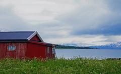 Red Cabin in Tromsø