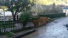 (spet) poplave ...