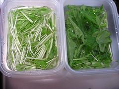 水菜は葉の部分と茎の部分に分けます