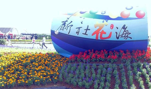 2013 11 09 台中.新社.花毯節