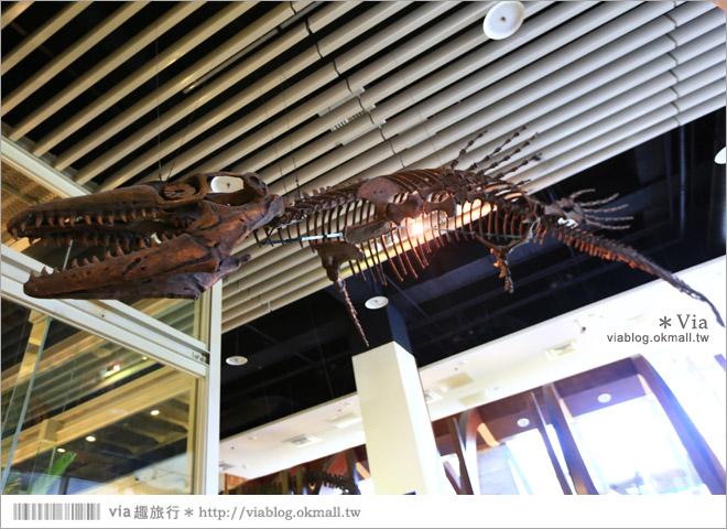 【台南南科景點】樹谷生活科學館~超大的劍齒象化石!有趣又能長知識的博物館!10