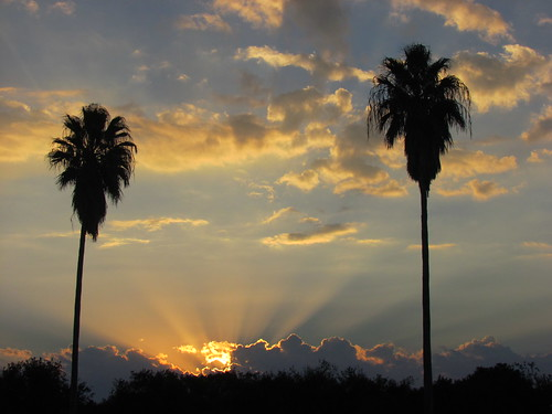 sunset sun nature sunshine clouds texas sundown cloudy dusk palmtrees riverbend