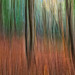 Autumnal ICM by Woodacus