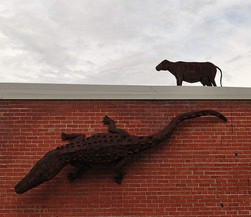Wall Alligator and Roff Cow