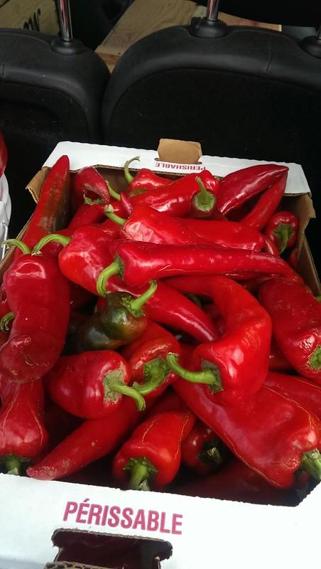 Half a Bushel of Peppers