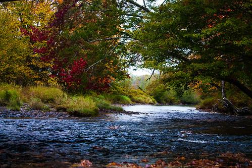 autumn trees canada fall water canon river landscape stream colours novascotia outdoor scenic canonrebel dslr canondslr fallcolours hwy14 canonrebelxsi canonxsi
