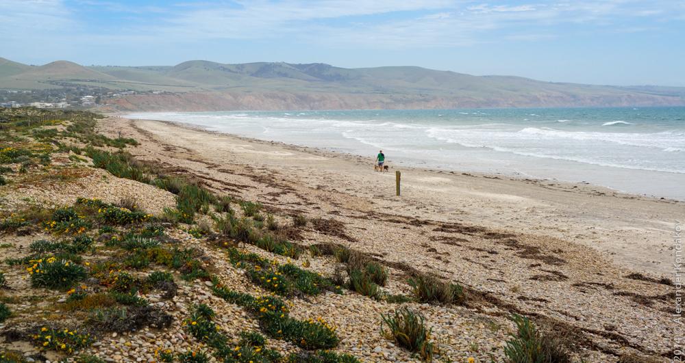 20141006 Aldinga Beach-3