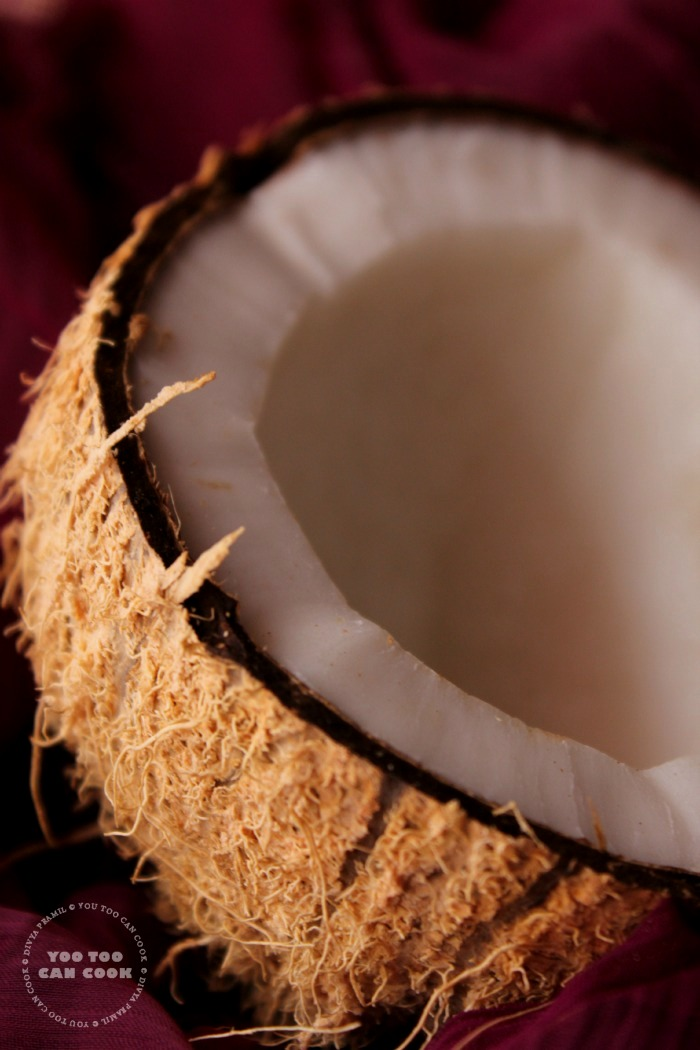 coconut shell 2