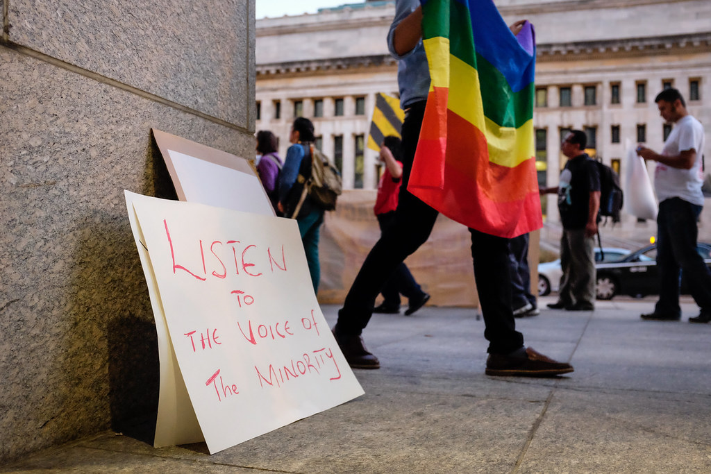 "a rainbow flag is held in a protest where there's a sign saying ""listen to the voice of the minority."""