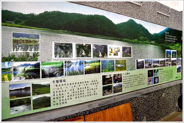 雙連埤漫步+雙連埤生態教室024-DSC_9933
