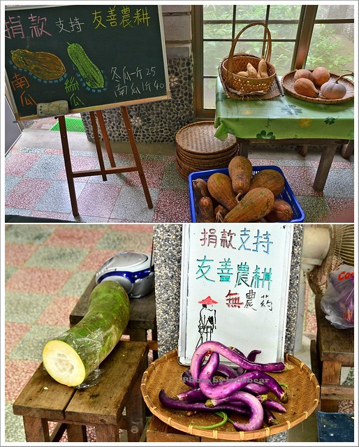 雙連埤漫步+雙連埤生態教室012-DSC_9890