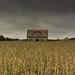 Forgotten Farm (Fall) by Tim_Rowe