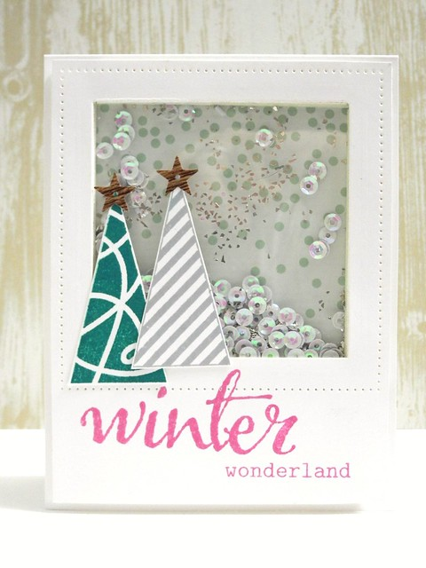 Winter Wonderland Shaker