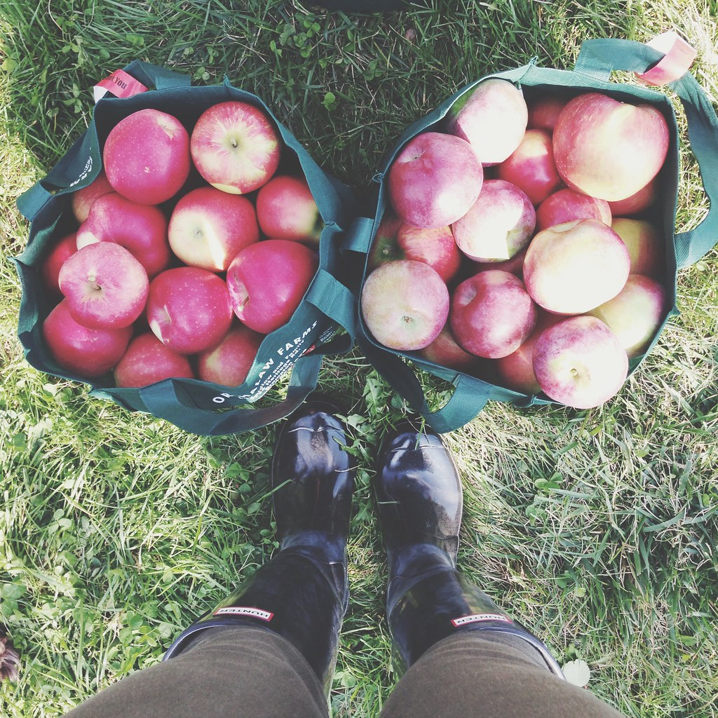 Apple picking  | Hunter boots, boots selfie | personallyandrea.com