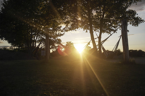 trees sunset summer panorama sun kids clouds denmark view bin hammock lensflare swinging clearsky summercamp efterskole rayoflight chesscamp skanderup