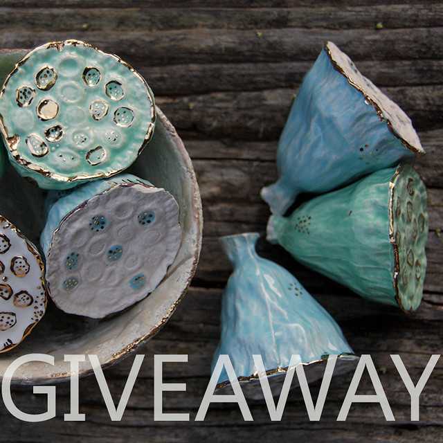 enter giveaway on instagram: http://instagram.com/laccentnou