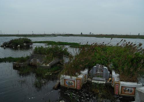 雲林縣成龍村的地層下陷區 (照片引用自Flickr 台灣水鳥研究群)