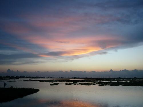 雲林縣口湖鄉的成龍溼地 (引用自Flickr)