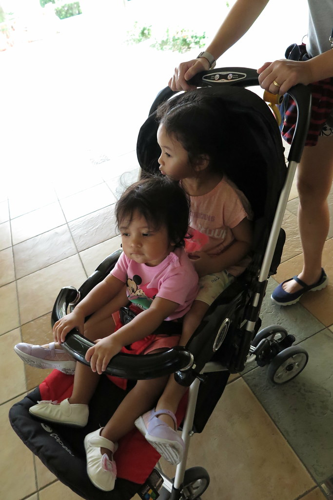 Ayra and Zara on Capella Stroller
