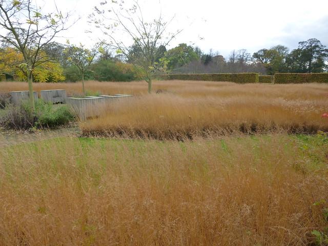 Scampston walled garden day 2 (42)