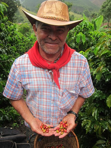 On the coffee farm tour