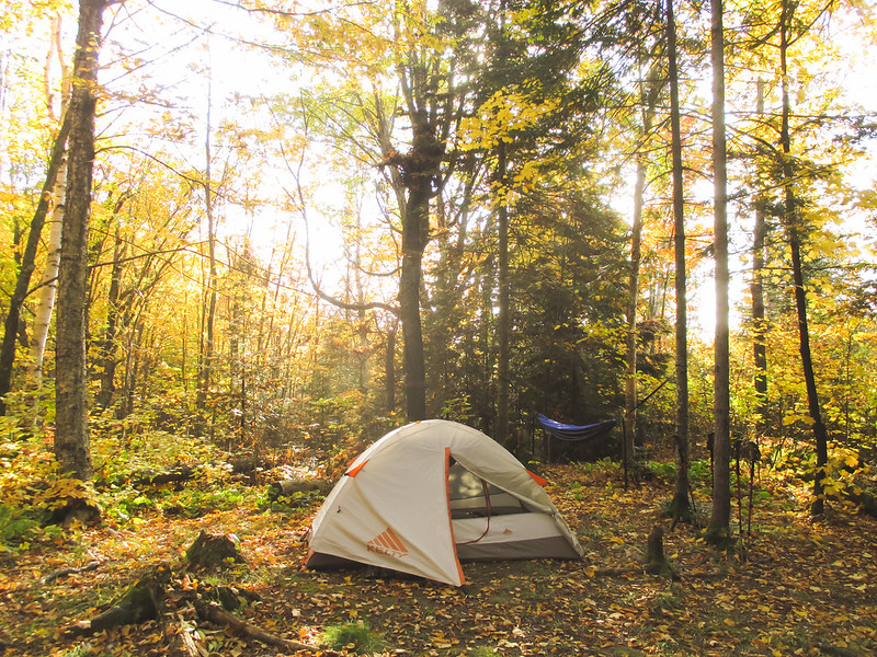 Camping at Cut Log Campsite on SHT