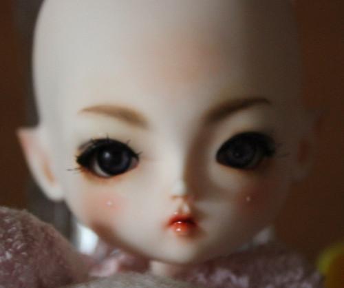 Elf Daisy with acrylic eyes