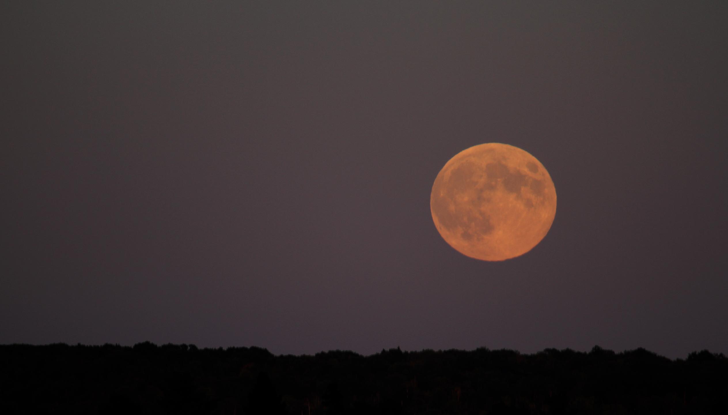 moon rising5