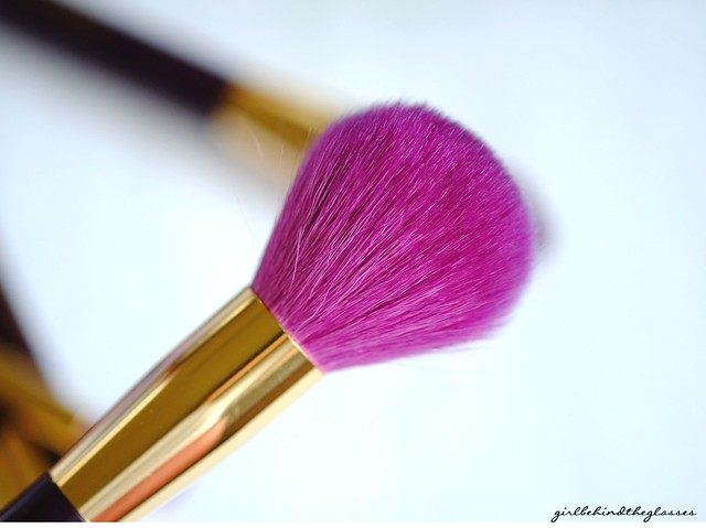 Sonia Kashuk 15th Anniversary Blusher Brush