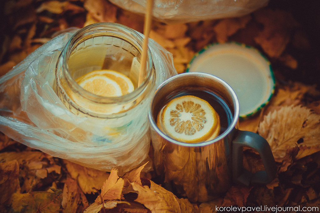 Autumn-275