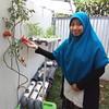 Istri senang hatipun riang :) #berkebun #berkebunyuk #hydroponic #hidroponik