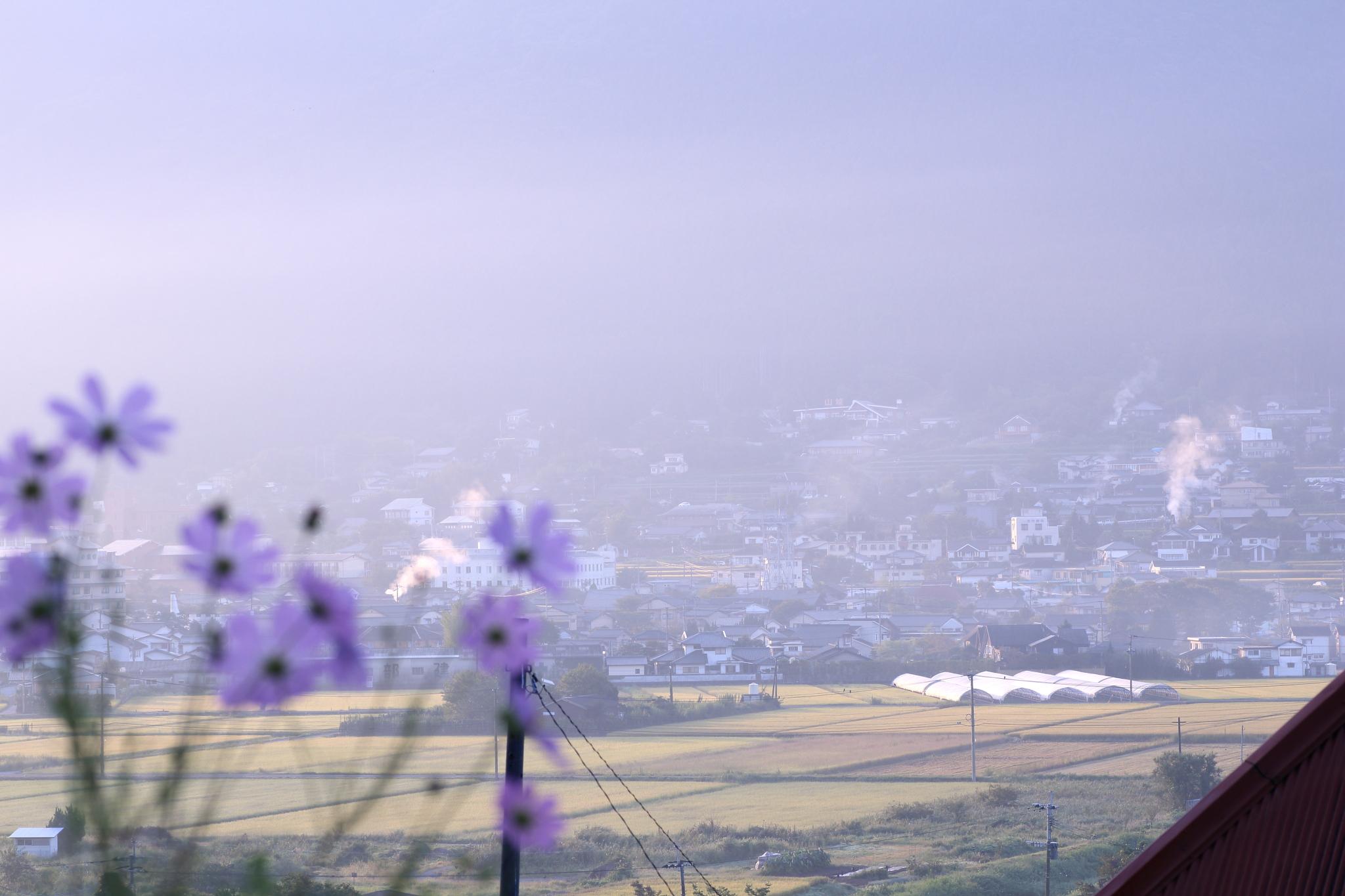 Spring Mist Spa Milton Hours
