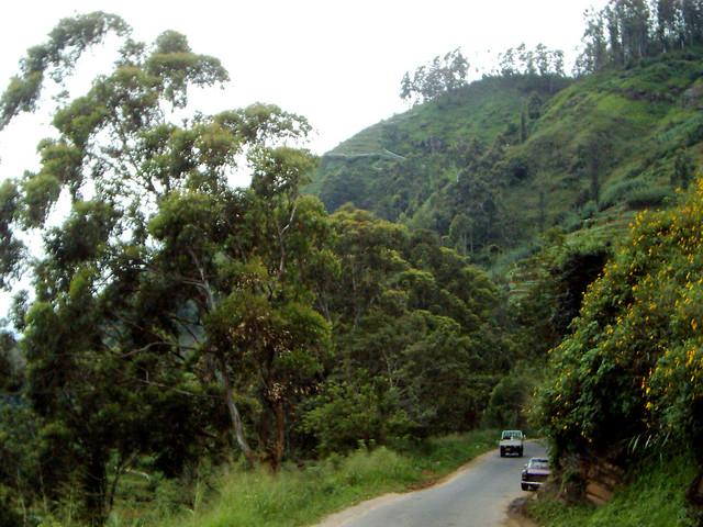 Between Welimada and Nurelia