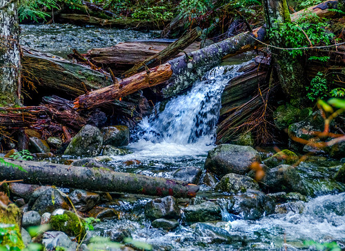 canada creek britishcolumbia mapleridge martinsmith goldenearspark nikon18200mmvrii nikond7000 goldcreekfallstrail