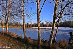 Winter is Coming-Taku Lake W_7865