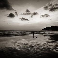 Duet [Flickr]