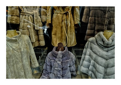 wool(0.0), leather(0.0), hood(0.0), coat(0.0), pattern(1.0), textile(1.0), fur(1.0), brown(1.0), clothing(1.0), fur clothing(1.0), outerwear(1.0), jacket(1.0),