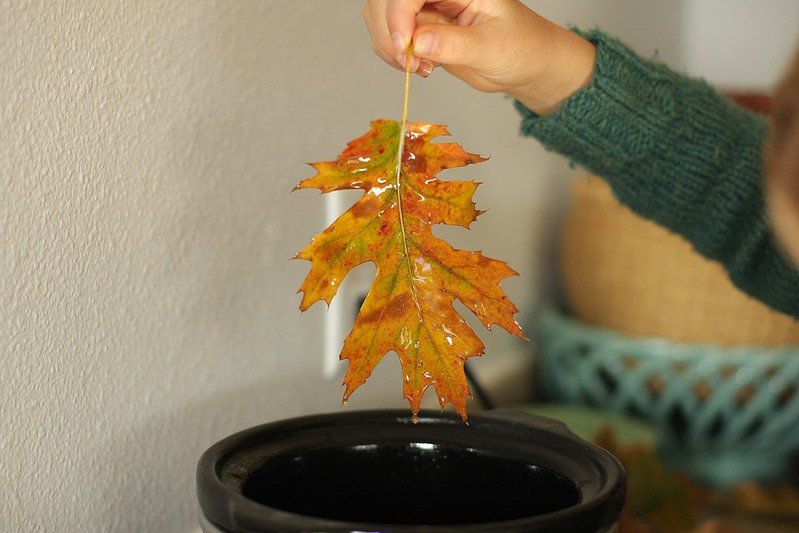 leaf dipped. dripping access wax into pot