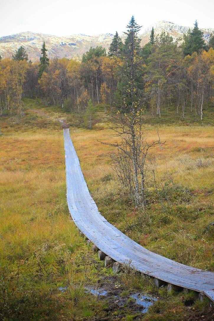 Furusjøen, Norja I @SatuVW I Destination Unknown