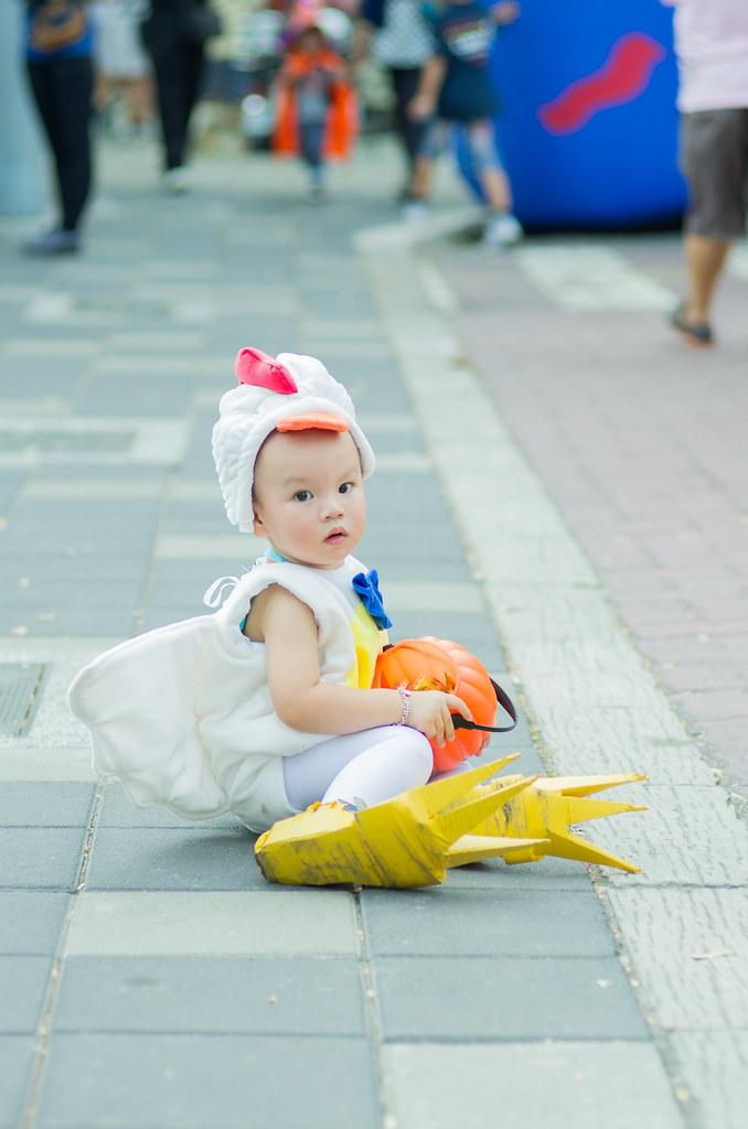 我最可愛的小公雞