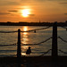 Mersey sunset by angelsgermain