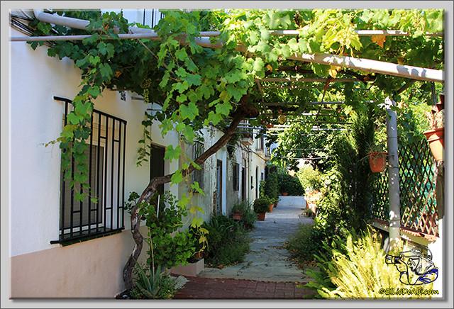 Calle d'Aigüafreda en Barcelona (10)