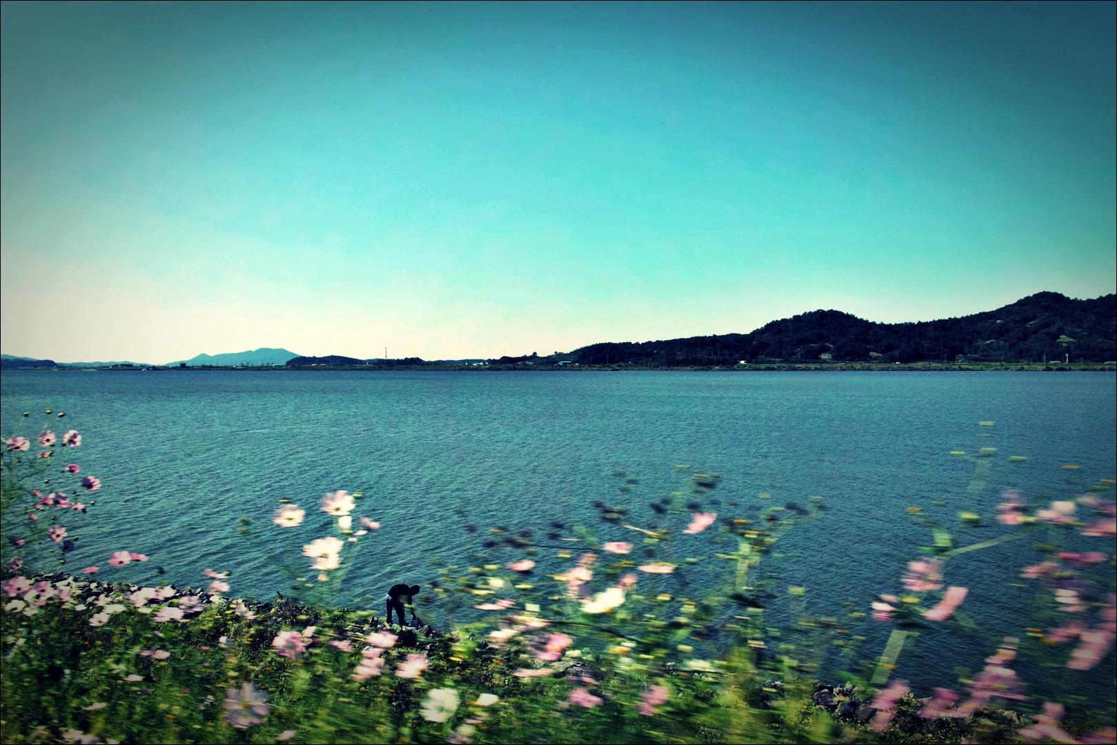 군산으로-'금강 자전거 캠핑 종주'