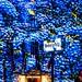 Hotel de Rome | Contemporary Photograhy | Festival of Lights 2014