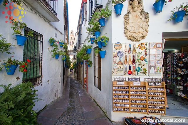 Calleja de las Flores, Córdoba, Spain