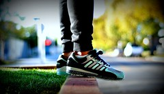 Adidas Torsion Integral S x SneakerFreaker