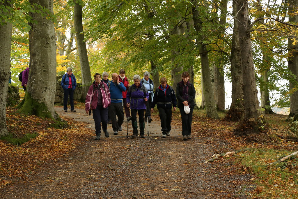 Crathes to Peterculter 22 October 2014 | Seafield Walking Group